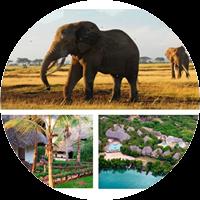 Urlaub: traumhafte Woche in 4* Resort in Kenia